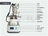 YZPR-100(M)Micro-reactor系列磁偶机械搅拌反应釜
