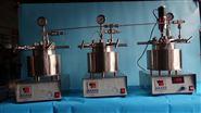 磁力搅拌不锈钢反应釜