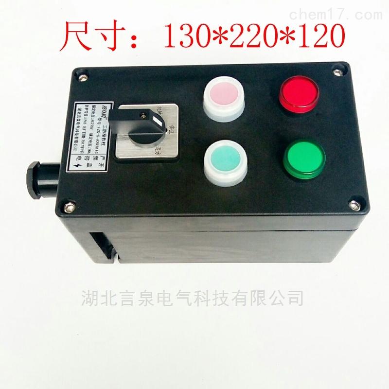 FZC-A2D2K1G三防操作控制箱IP65