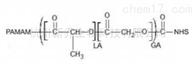 树枝状聚合物PAMAM-PGA-NHS PAMAM G2 嵌段共聚物