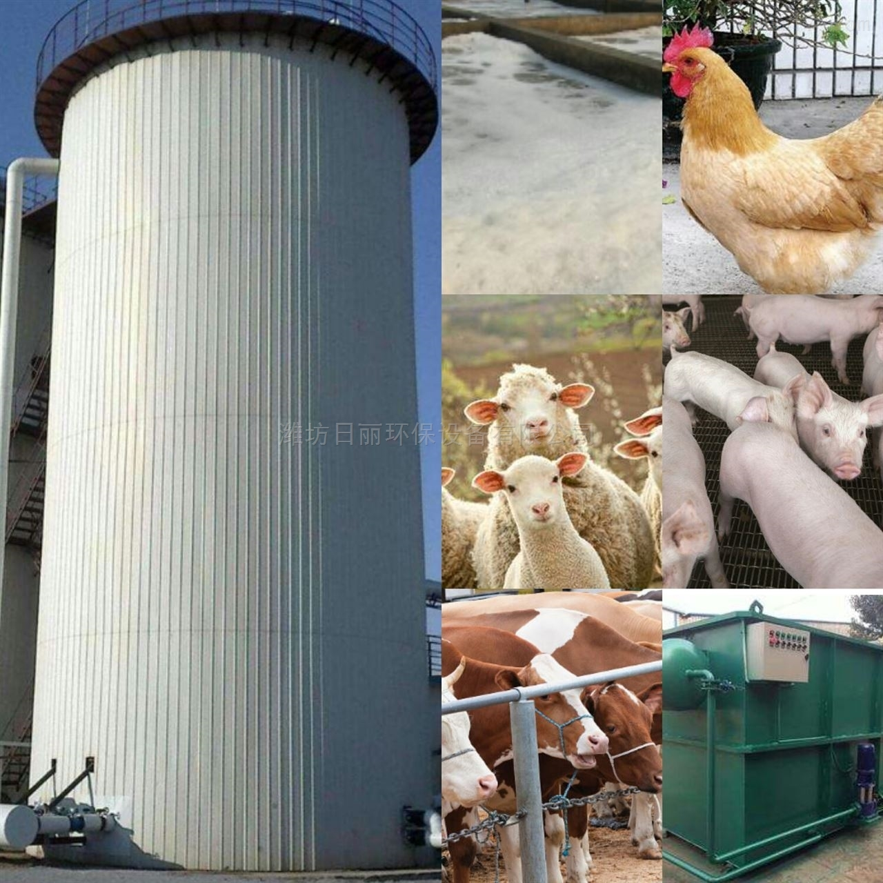 陕西省养殖场污水处理设备RL-IC反应器