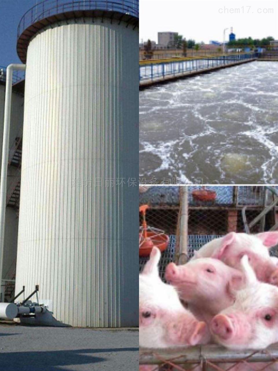 安阳市生猪养殖废水RL-UASB厌氧处理设备
