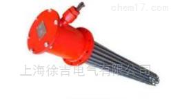 插入式油电加热器