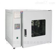 电热恒温鼓风干燥箱9425A(250℃)