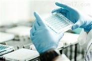 Cy5-ssDNA-PDA-陜西瑞禧生物優惠出售