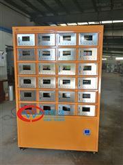 GWGP-12TG土壤样品干燥箱