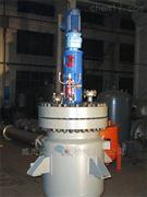 多功能磁力釜,分散反应釜