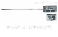 RGYC-1 含湿量测试仪
