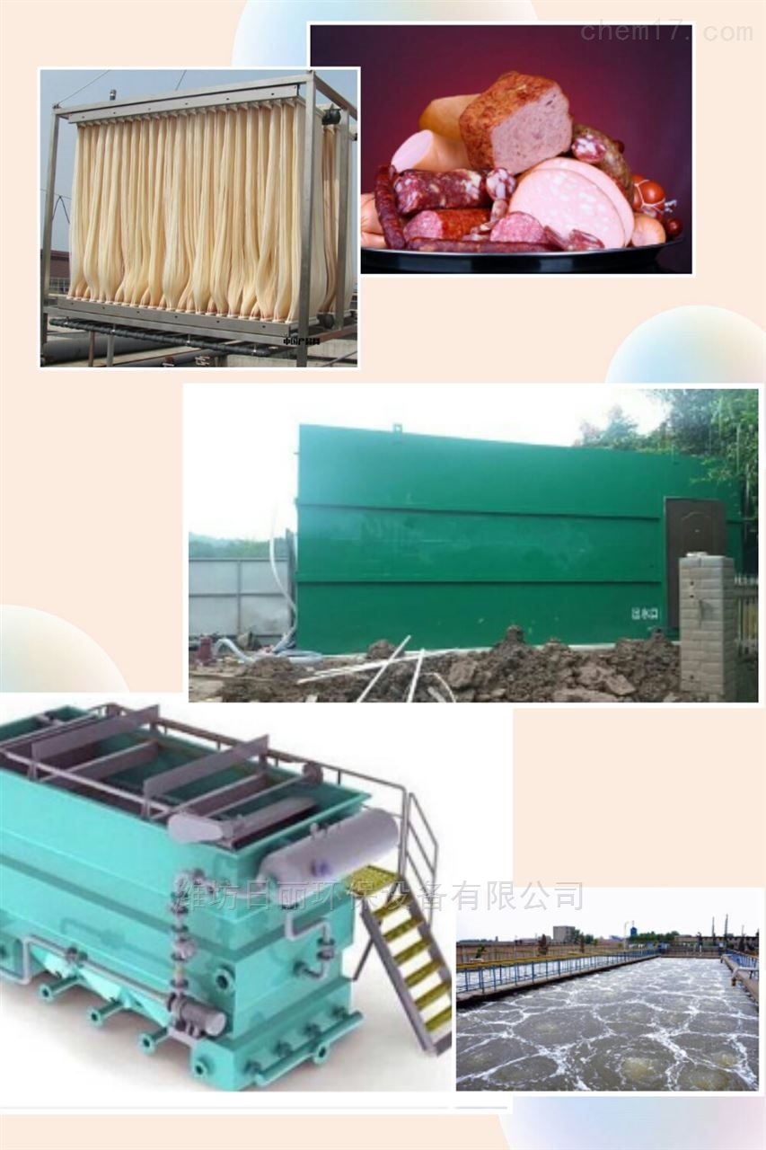 临沂市肉制品深加工污水处理设备RL-WSZ-AAO