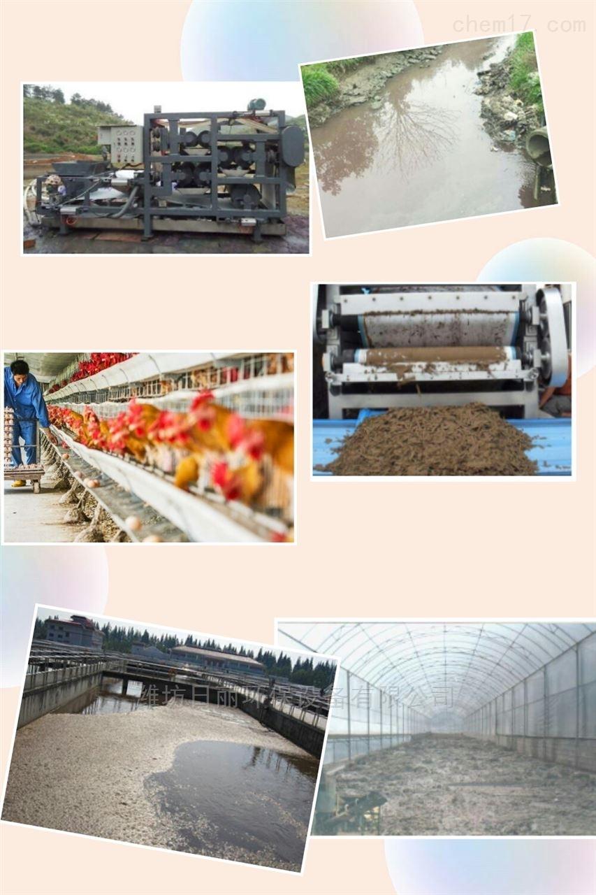 新疆养鸡场污泥脱水设备RL带式压滤机