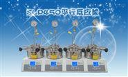微型高压反应釜厂家SLP-450