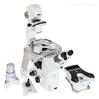 布鲁克 BioScope Resolve 生物扫描显微镜