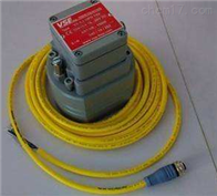 原装进口威仕流量计VS0.02GPO13T-31Q21/X