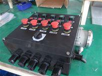 BZC8050/BZC8060/LCZ8050/LCZ8030防爆防腐操作柱