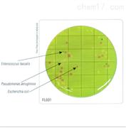 HiTouch™ 6种病原菌显色计数平板