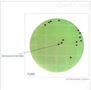 HiTouch™ 大肠杆菌和大肠菌群计数平板