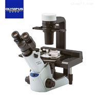 奥林巴斯三目倒置相差显微镜