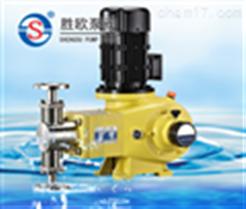 J-ZR柱塞式计量泵