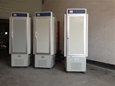 恒温微生物培养箱带低温