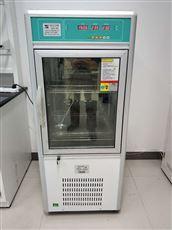 上海微生物细胞培养箱150L