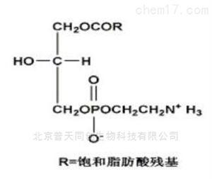 190024溶血磷脂酰乙醇胺 中检所标准品