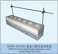 常州国宇HDM-6*250A数显六联控温电热套