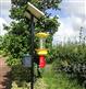 TPSC7-1Z物联网自动虫情信息采集 杀虫灯