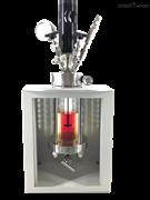 250ml小型反应釜
