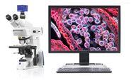 zeiss蔡司临床偏光正置生物显微镜