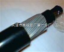 NH-DJYVP耐火计算机电缆