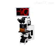 多波段LED荧光显微镜
