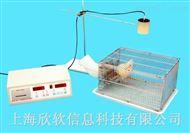 小动物活动记录仪实验研究