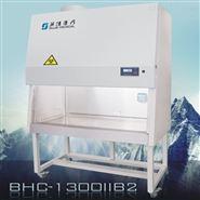 BHC-1300IIB2生物安全柜 生物制药洁净台