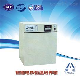 DHP-9162智能恒温培养箱