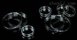 标普 细菌培养皿