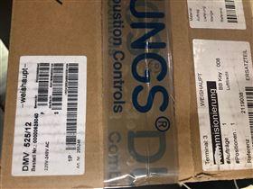 Dungs燃气阀组DMV525/12上海办事处现货特价
