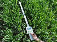 泛勝便攜式植物冠層分析儀