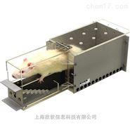 大小鼠爬梯实验装置测试研究