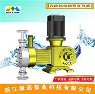 RX液壓隔膜計量泵