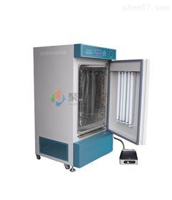 云南智能人工气候箱RGX-150B养虫设备箱
