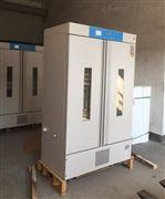 LHS-500SC双门恒温恒湿箱500L