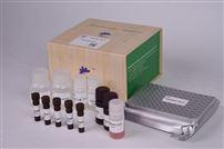 赭曲霉毒素A霉菌毒素赭曲霉毒素A ELISA检测试剂盒