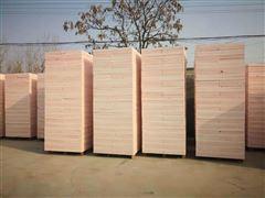 A级硅质聚苯板