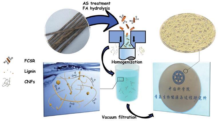 —重结晶——得到致密纳米结构纤维素纳米纸
