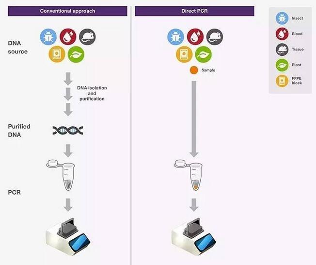 直接PCR仪 间接PCR仪