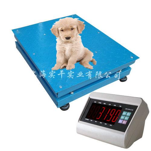 宠物诊所用电子秤