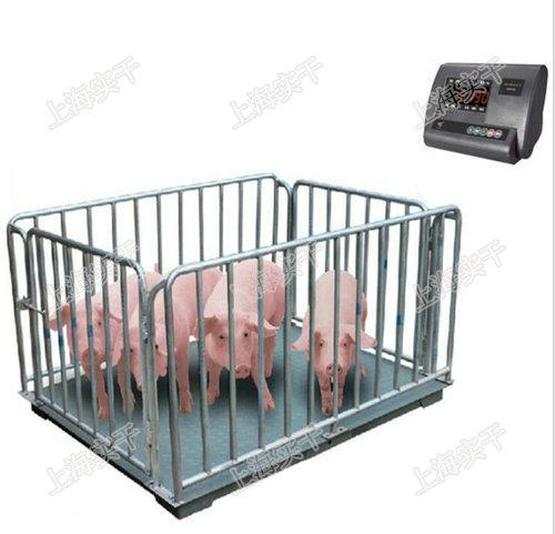 活猪称重电子秤