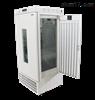 LRH-400A-YG药物稳定性试验箱(带光照)