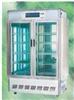 东南仪器RXZ-1000B人工气候箱