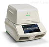 CFX96 Touch實時熒光定量PCR儀
